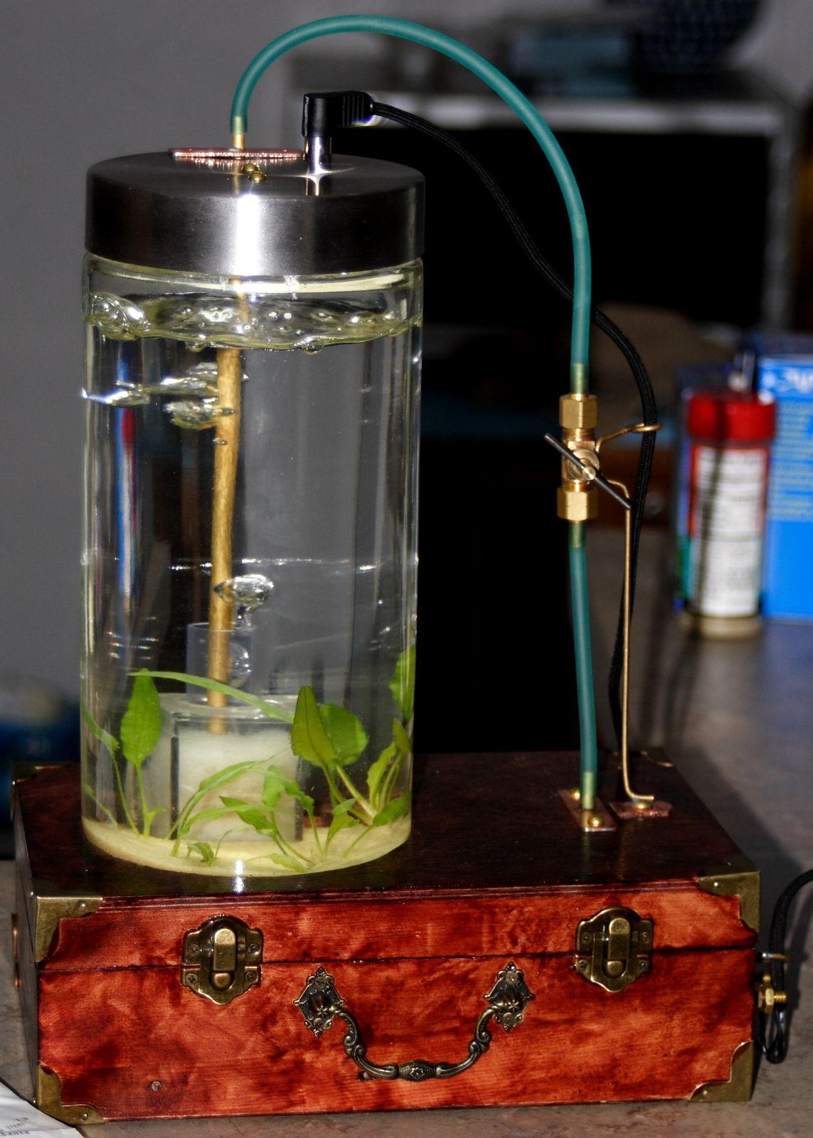 Steampunk Aquarium – HNet Inc.